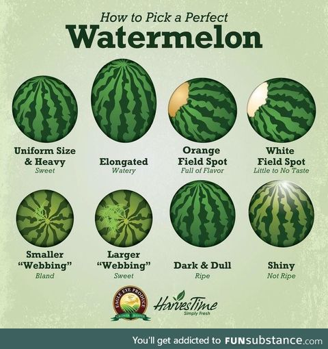 Be more picky with your h20 melons