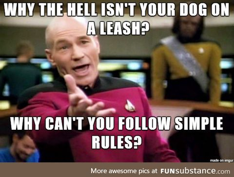 Why can't some people leash their dog?