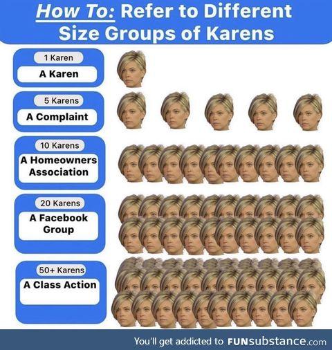 A gaggle of Karen's