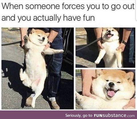 You usually do end up having fun, ya goof