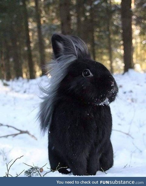It's not a phase mum