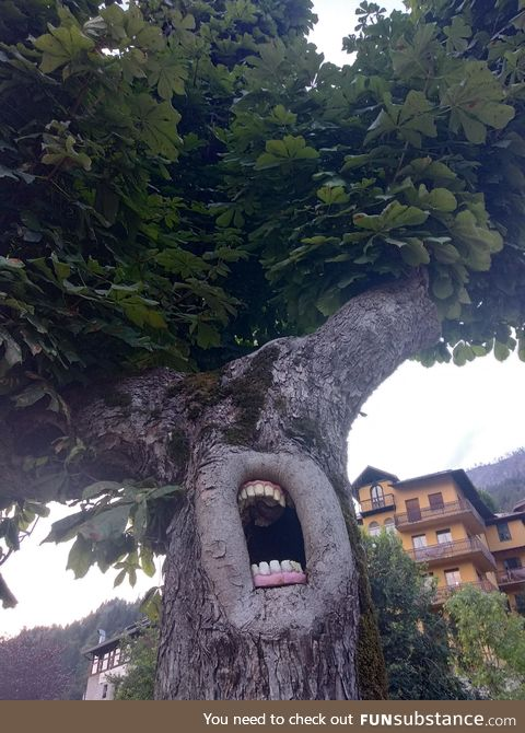The Ents are not pleased