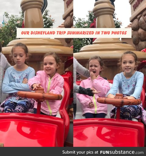 The real disneyland experience