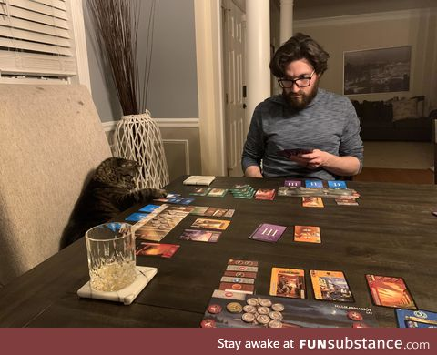 Day 10 of quarantine. The cat continues to kick our asses at board games ????