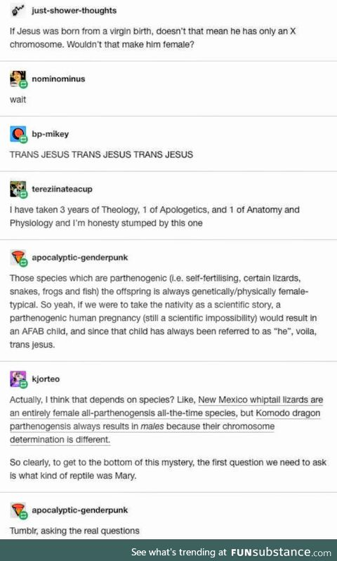 The reptile side of tumblr