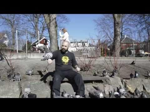 Just me, feeding pigeons