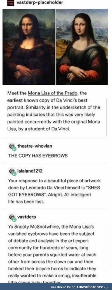 Mona Lisa And The Case of The Missing Eyebrows