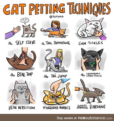 Cat petting techniques
