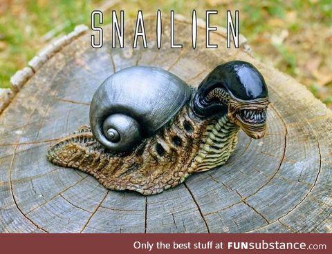 Snailien
