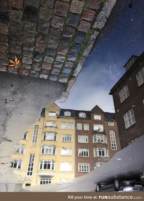 A picture of a puddle in Copenhagen