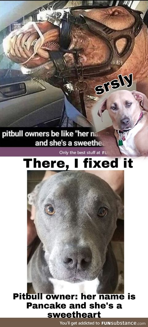 I hate Pitbull haters. There you go.