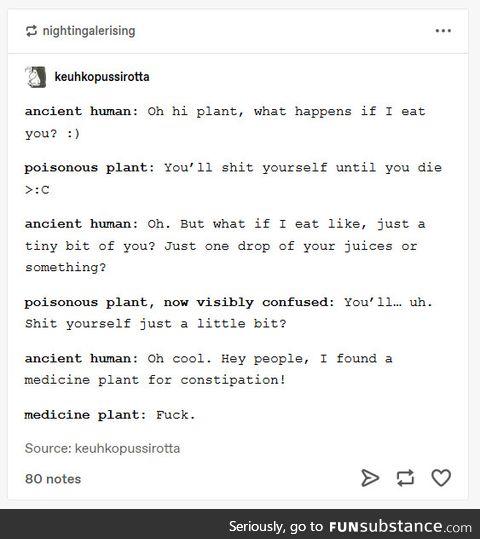 Human versus plant