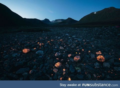 If you cast an ultraviolet flashlight on the hills around Narsaq, a coastal town in