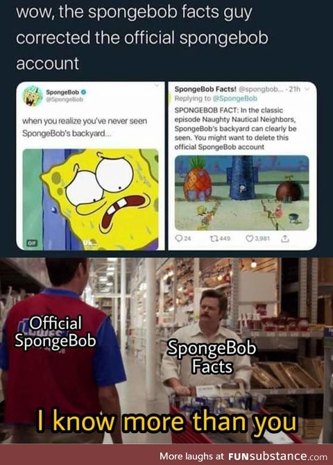 Sponge facts