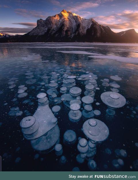 Ice bubbles in Alberta