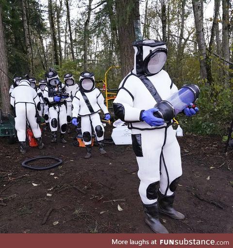 Washington State Murder Hornet eradication team 2020