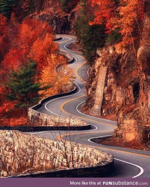 A road in USA