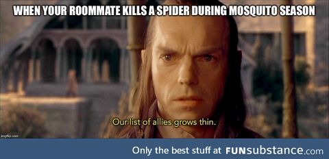 Is Elrond's other job a philosopher... Or a genius