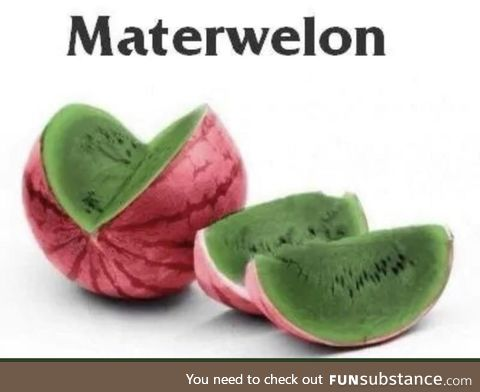 Materwelon