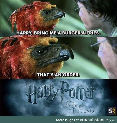 The Order, of the Phoenix
