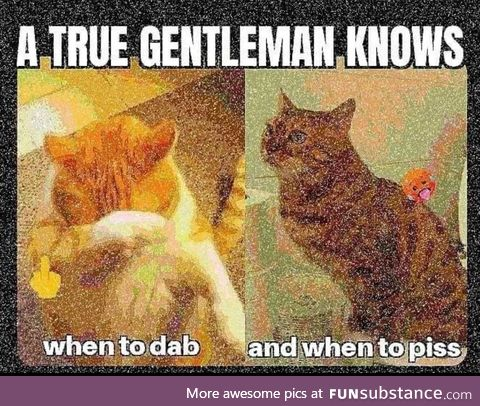 Never dab, always piss
