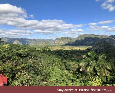 A beautiful Cuban jungle