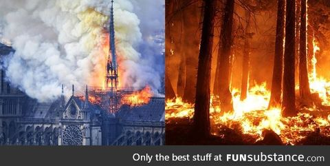 Notre Dame Cathedral received billions in donations after it went ablaze in April. The