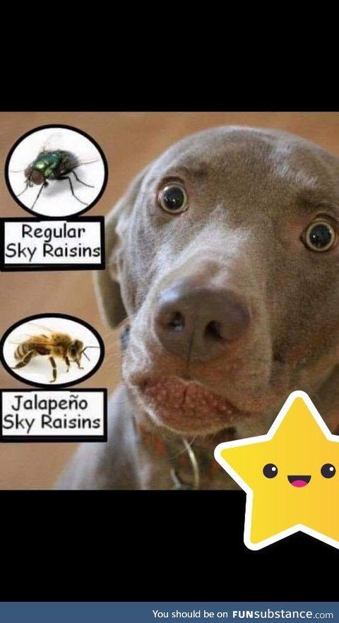 SKY Raisins (541 x 960)