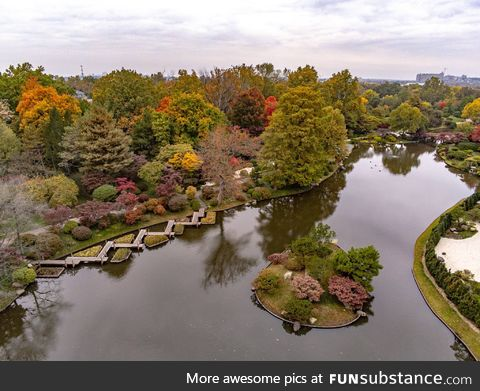 Fall colors in the Missouri Botanical Gardens