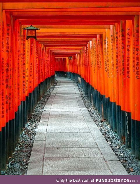 Tori gates at the Fushimi Inari shrine, ????????