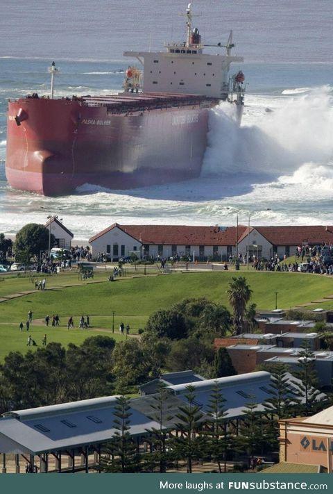 Pasha Bulka washes ashore in Newcastle Australia