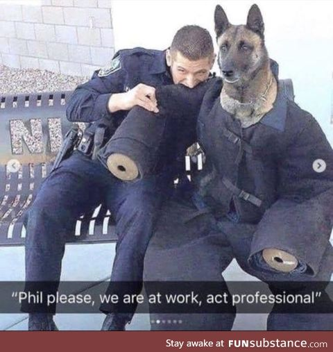 Be professional Phil