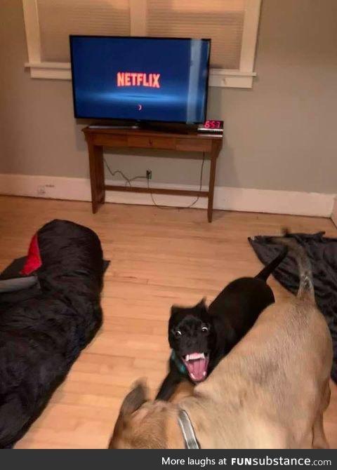 """Netflix and Chill"""