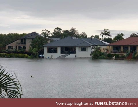 Australia. Burning one minute. Flooding the next (Yep that's shark swimming down the