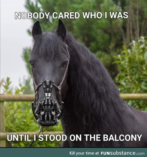 Mom said we can't have a horse in the flat