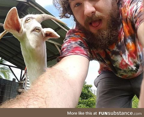 Don't use panorama with a moving goat