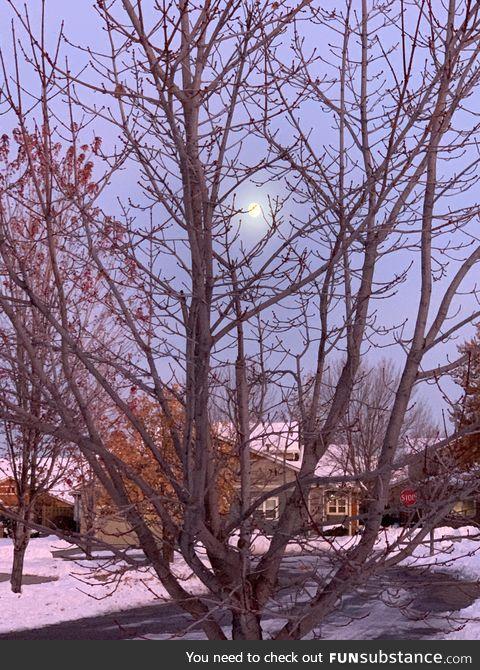 Fall moonrise