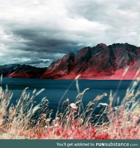 New Zealand if you could see infrared light. (Photo taken using infrared film)