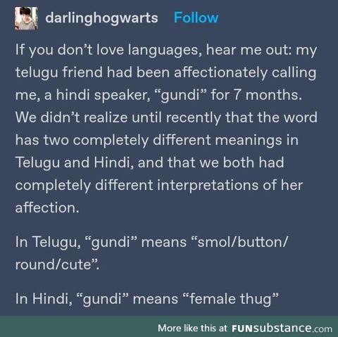 Gundi is relative