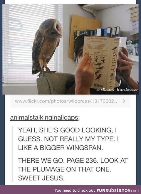 Owl er*tica