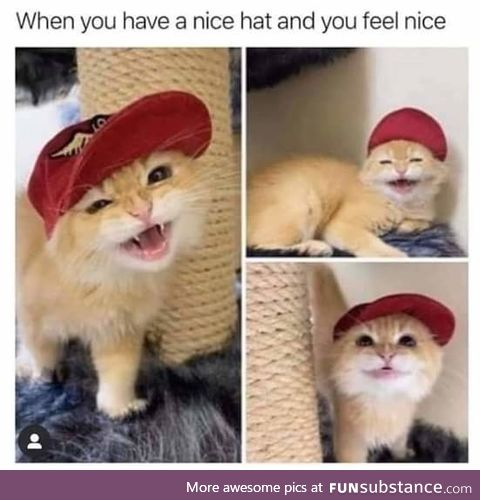 Hat game on point