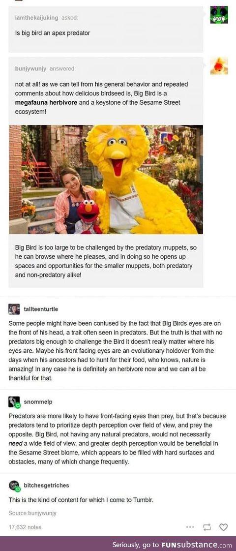 Big bird - a biological assessment