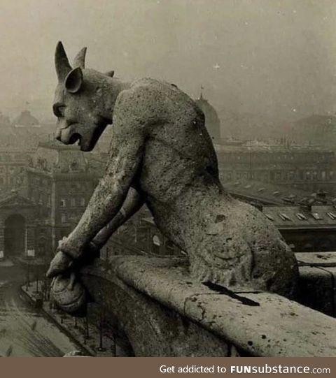 The Gargoyle of Notre Dame overlooking Paris, circus 1910