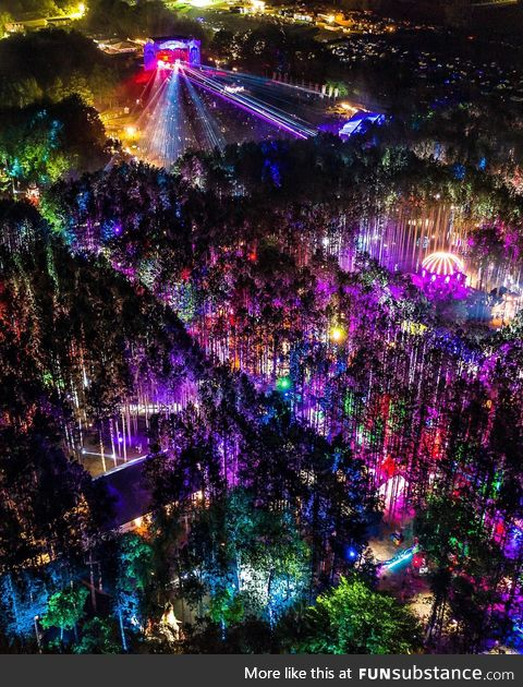 Electric forest festival 2019