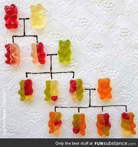 DNA for gummies