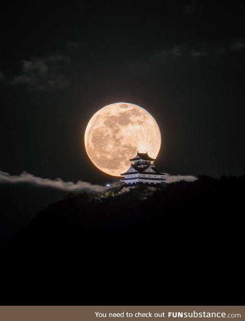 Moon over the castle. Gifu Castle, Japan