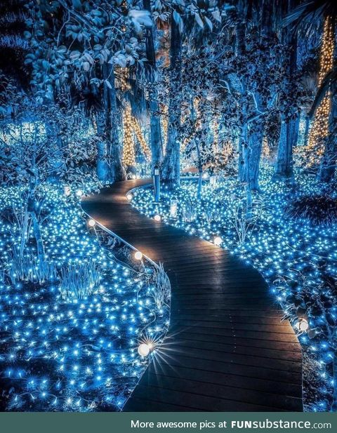 Fairy walk in Japan