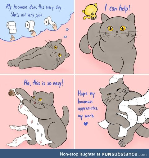 Kitty hero helps silly hooman @koobeycatcomics