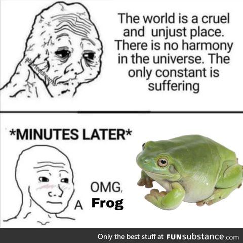 Froggo Fun #396 - Truth
