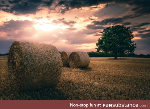 Sunset in the fields of Weinheim - Germany